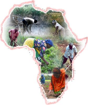 farming_africa