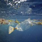 Plastic under the sea