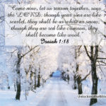 snow quotes for revolution slider 4