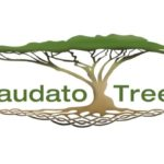 Laudato Tree Logo 1