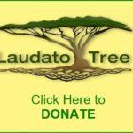 Donate Button b