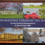 Dromantine through the seasons